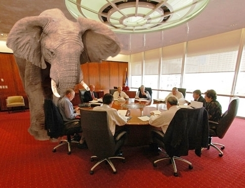 elephant-in-the-room1 2.jpg