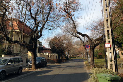 budapest-s16.jpg