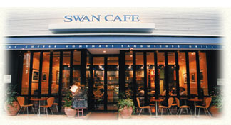 swan-dt.jpg
