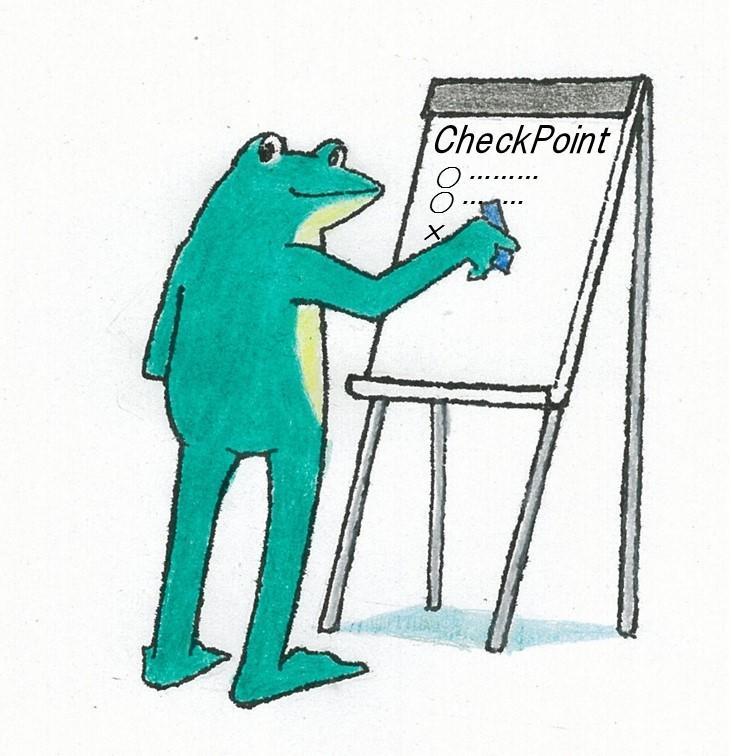 Check Point.jpg