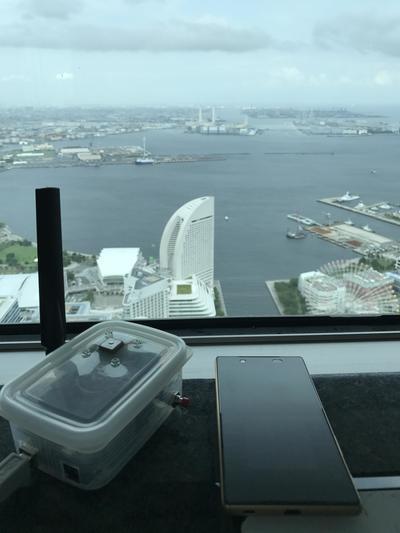 yokohama-landmarktower-sokutei.jpg