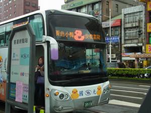 Duck_bus