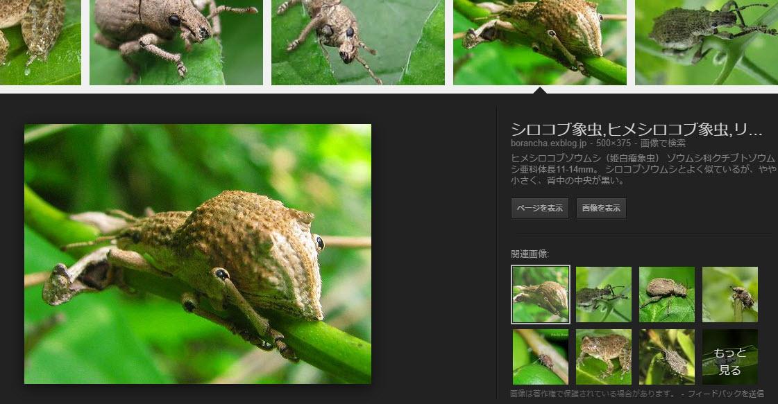 https://blogs.itmedia.co.jp/narisako/google4.jpg