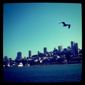 サンフランシスコの景色